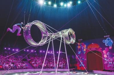 上海野生动物园新增夜场表演