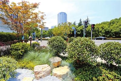 通过主题景点,花坛花境,植物造景和口袋公园的精心设计来提升路口景观
