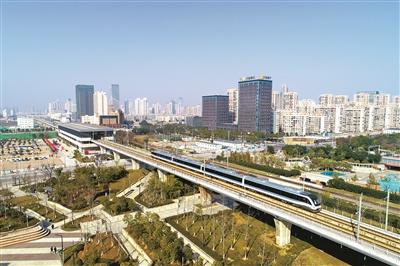 """""""1月23日中午,温州市民林彩平从龙湾区的家里到鹿城区只花了15分钟"""